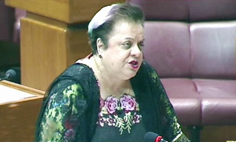 No cases registered against journalists, rights activists by FIA: Shireen Mazari