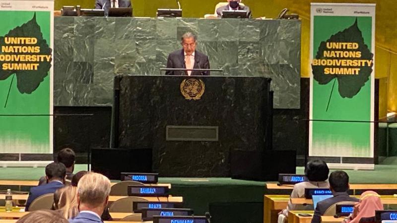 Pakistan's permanent representative to the UN Munir Akram speaks at the UN biodiversity summit. — PID