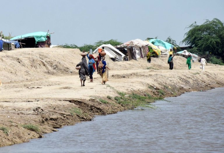 Displaced women fetch water to take to tents erected on the bank of the spinal drain on the Left Bank Outfall Drain System (LBOD) near Naukot in Mirpurkhas district. A breach had occurred in the spinal drain at RD-287. — Photo by Yasir Rajput/The Third Pole