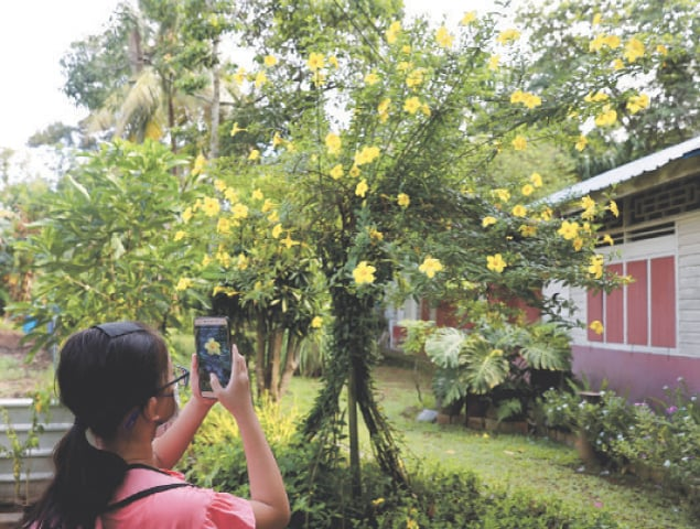 SINGAPORE: A participant of a local tourism group tour takes photos of flowers in Kampong Lorong Buangkok, the last remaining village in Singapore.—Reuters
