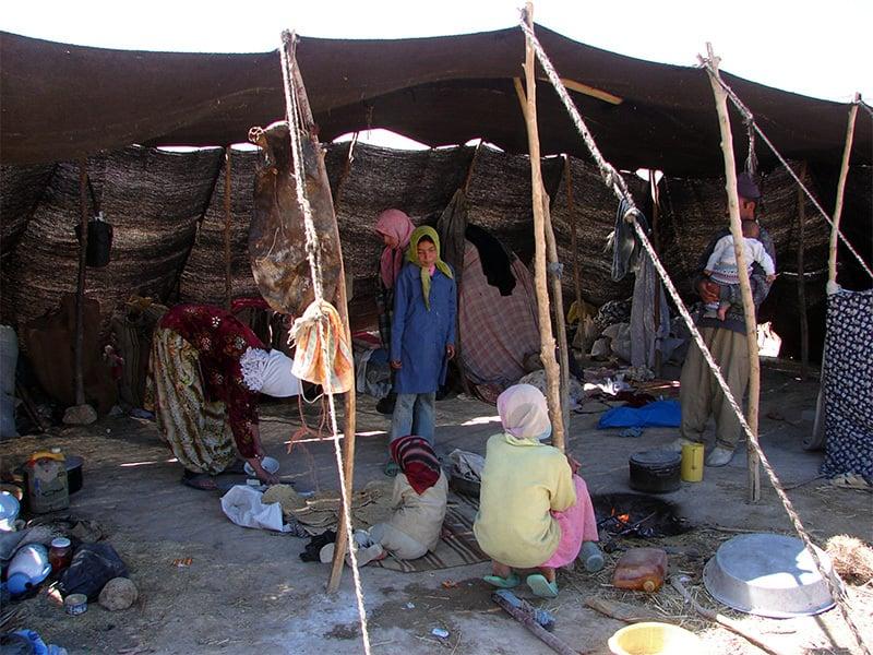 بکروال سردیوں کے موسم میں میدانی علاقوں میں عارضی گھر تعمیر کرلیتے ہیں—فوٹو بشکریہ: پروفیسر نفیس