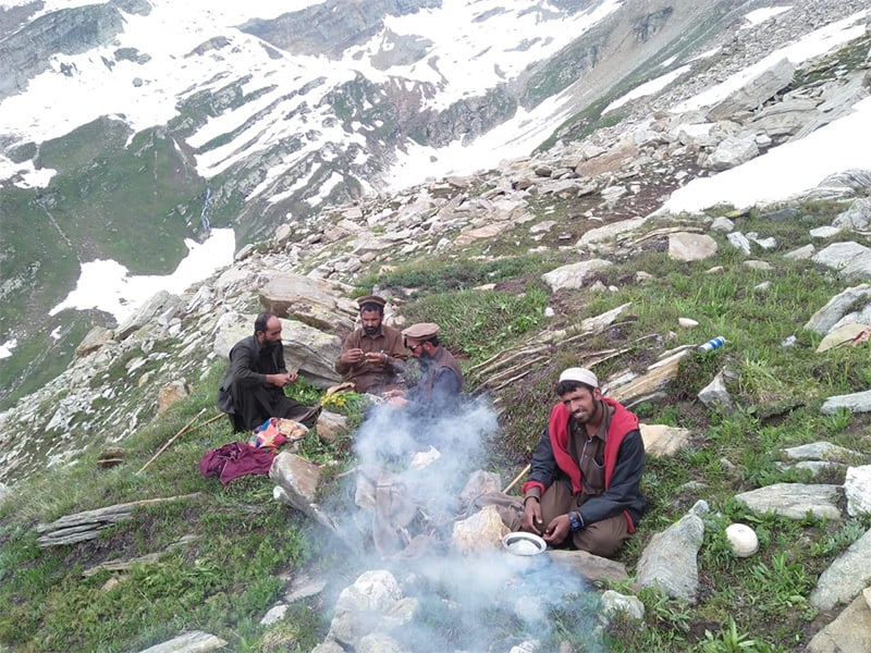 پہاڑوں پر موجود بکروال—فوٹو: عبدالرؤف