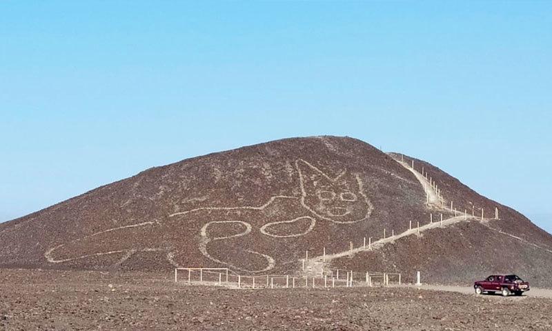 امریکی ملک پیرو کے پہاڑ پر 2 ہزار سال پرانا بلی کا خاکہ دریافت