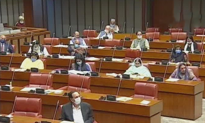 A screengrab from the Senate session. — DawnNewsTV