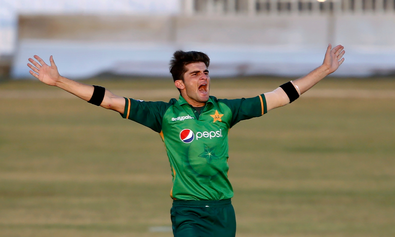 Pacer Shaheen Shah Afridi celebrates after taking the wicket of Zimbabwe's batsman Chamu Chibhabha during their 1st one-day international cricket match against Zimbabwe at the Pindi Cricket Stadium, in Rawalpindi on October 30, 2020.
