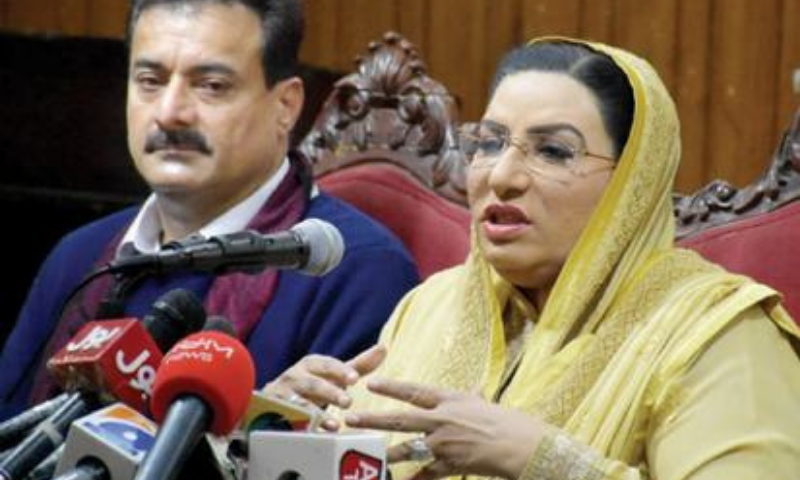 Special Assistant to the Chief Minister on Information Firdous Ashiq Awan speaks at a press conference on Saturday. — White Star