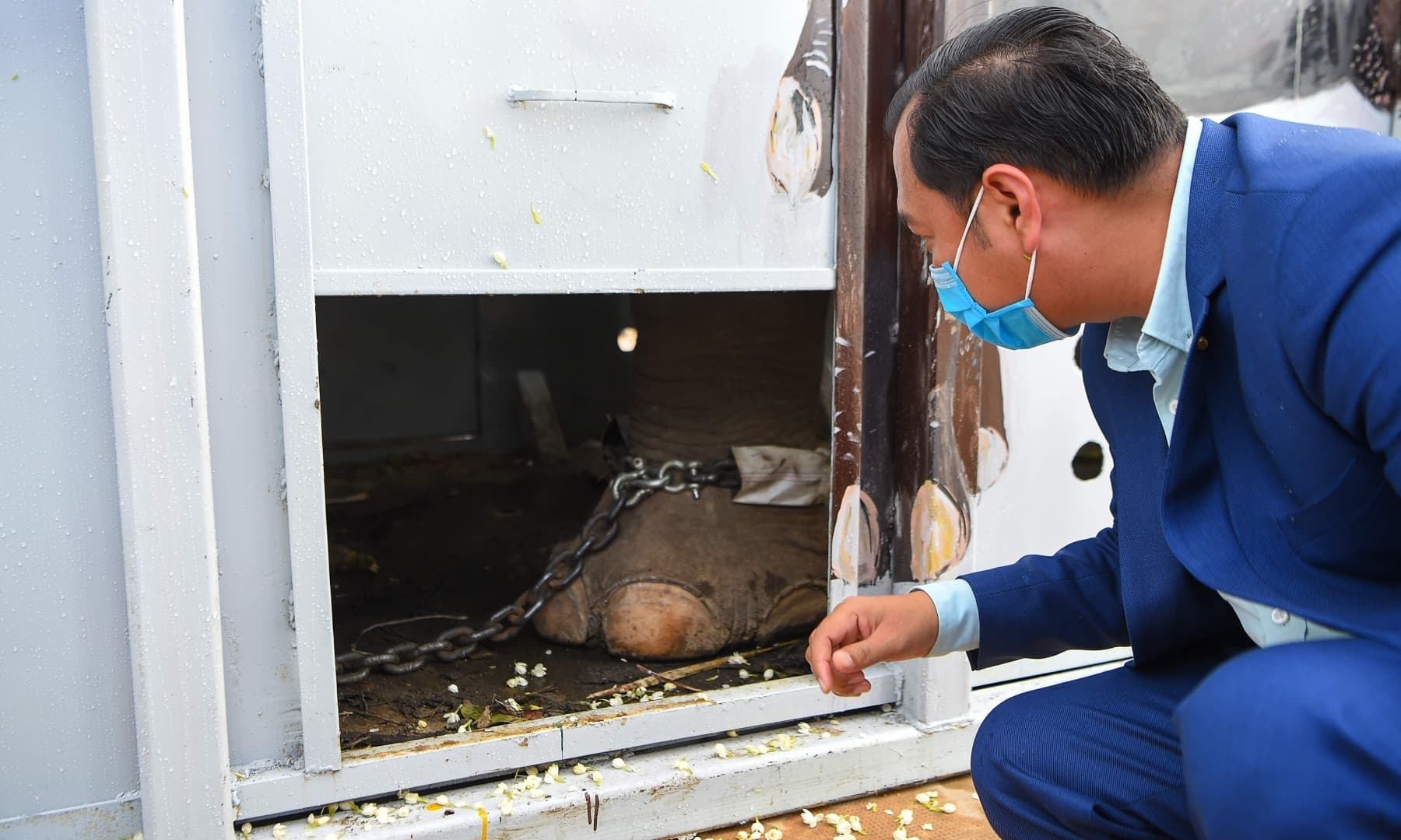 Cambodia's Deputy Minister of Environment Neth Pheaktra catches a glimpse of Kaavan after his arrival in Cambodia. — AFP