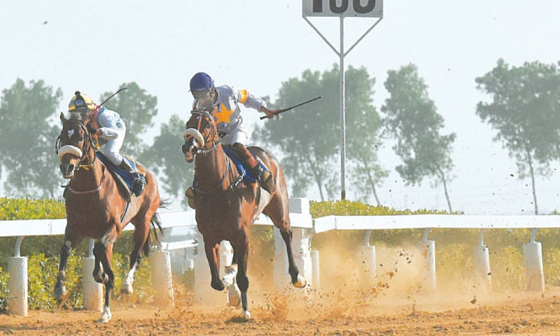 ROYAL Ransom (second R) overtakes Big Bravo in home stretch to win the Quaid-e-Azam Gold Cup at the Karachi Racecourse on Saturday. — Tahir Jamal/White Star