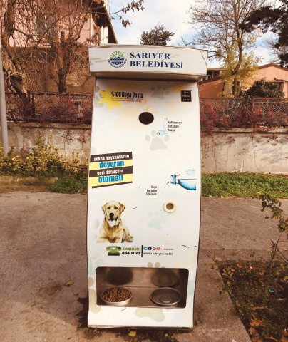 Recycling bins in Istanbul dispense food for stray dogs and cats Rachael Ruble/Twitter