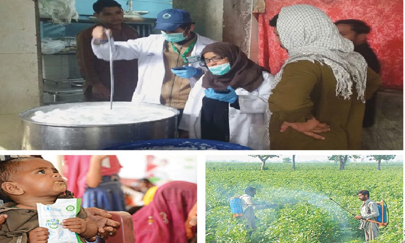 Clockwise from top: The Punjab Food Authority team carries out an inspection in a milk shop in Lahore; pesticide residues in foods have been found to be beyond permissible limits across the country; a child receives nutrition treatment at a centre in Tharparkar  | World Food Programme/Amjad Jamal