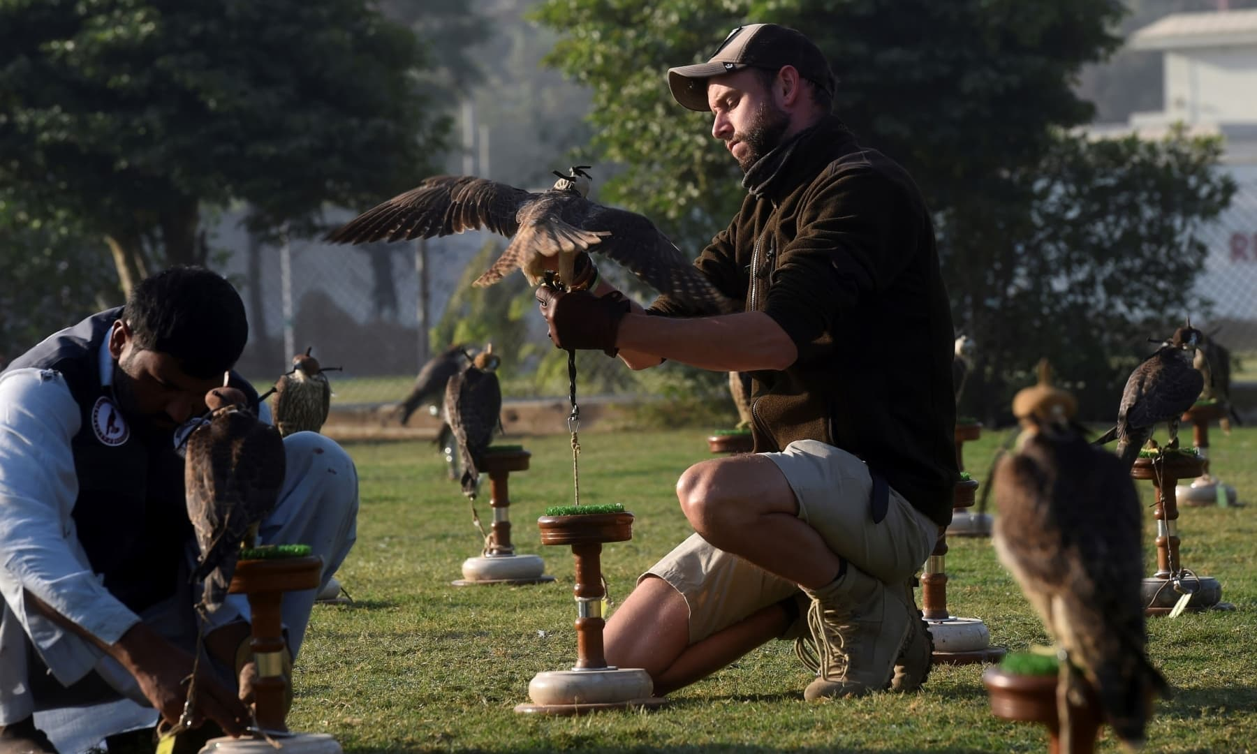 Hielko Van Rijthoven (R), a conservationist working with Wings of Change, examines a falcon seized by authorities from smugglers, in Karachi, Nov 23, 2020. — AFP