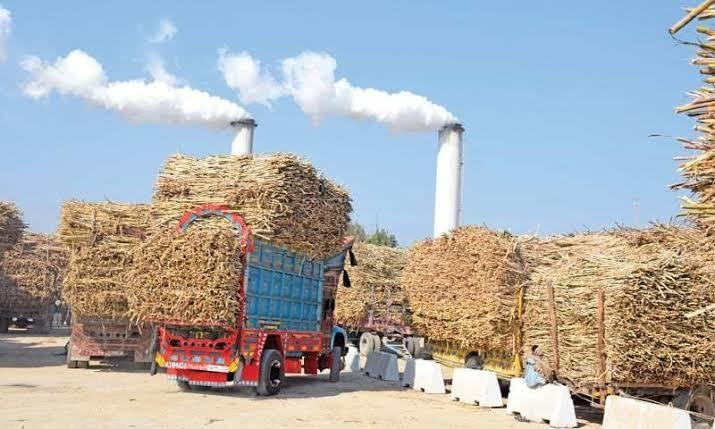 A stalemate persists between sugar mills, farmers and government authorities on the value of sugarcane. - Photo by Umair Ali/File