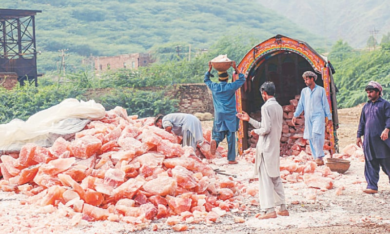 Pakistan has finally notified the Geographical Indication (GI) Rules strengthening its case against India over safeguarding its claims of basmati rice and Himalayan pink salt.