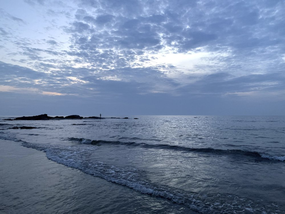 A view of the Morjim beach on the Arabian Sea coast during sunset at Goa.