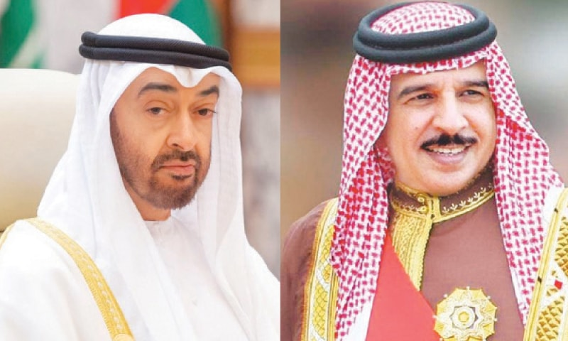 Crown prince of UAE / Bahrain's king