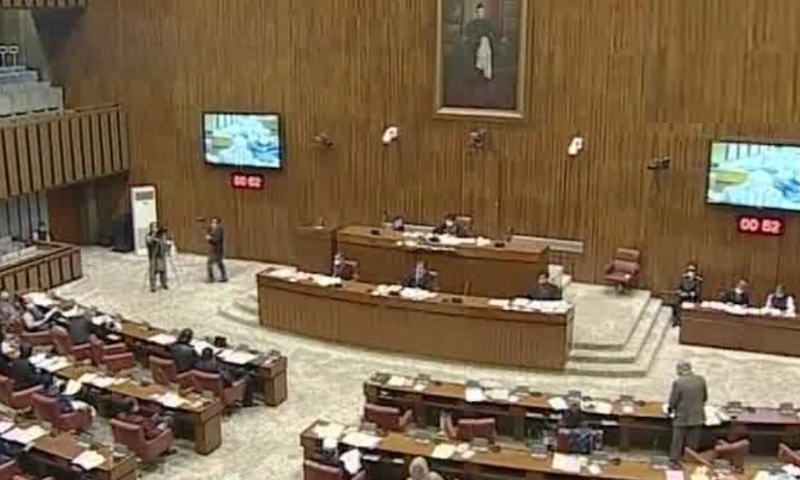 A general view of the Senate session on Monday. — DawnNewsTV