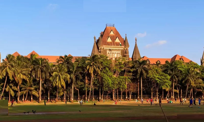 خاتون جج کی جانب سے سنائے گئے فیصلے پر ماہر قانون بھی حیران رہ گئے — فائل فوٹو: ٹائمز آف انڈیا