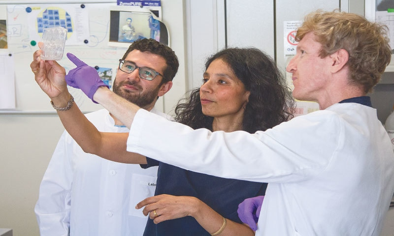 Dr Asifa Akhtar with colleagues | Max Planck Institute of Immunobiology and Epigenetics