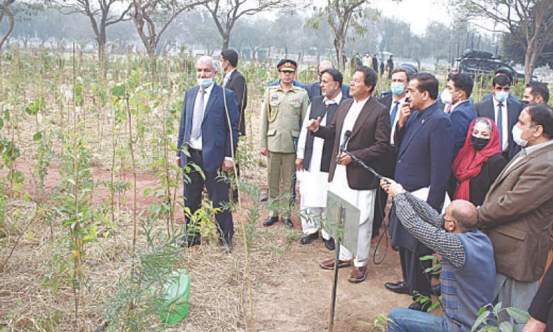 Prime Minister Imran Khan being briefed after the inauguration of Miyawaki Urban Forest at Jilani Park on Friday.—APP