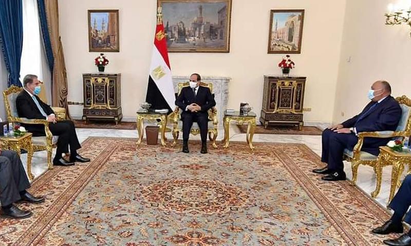 مصر ، پاکستان دہشت گردی، انتہاپسندی کےخلاف تجربات شیئر کرسکتے ہیں، شاہ محمود قریشی
