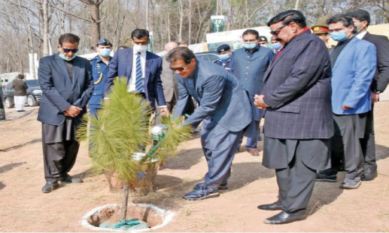 Prime Minister Imran Khan plants a sapling to inaugurate the spring tree plantation drive in Islamabad on Wednesday. — White Star