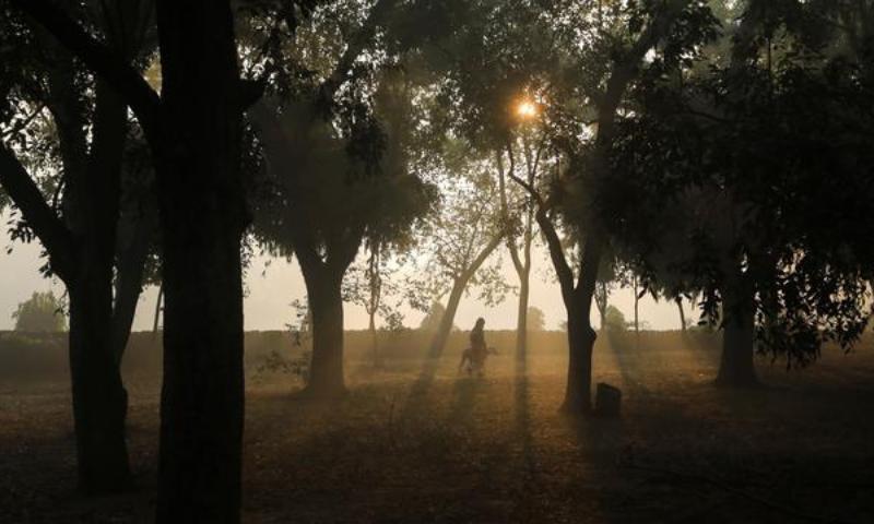بھارت: نئی دہلی میں فضائی آلودگی سے 2020 میں 54 ہزار افراد لقمہ اجل بن گئے