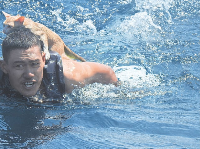 A THAI navy officer swims with a rescued cat on his back in the Andaman Sea in this picture obtained from social media.—Reuters
