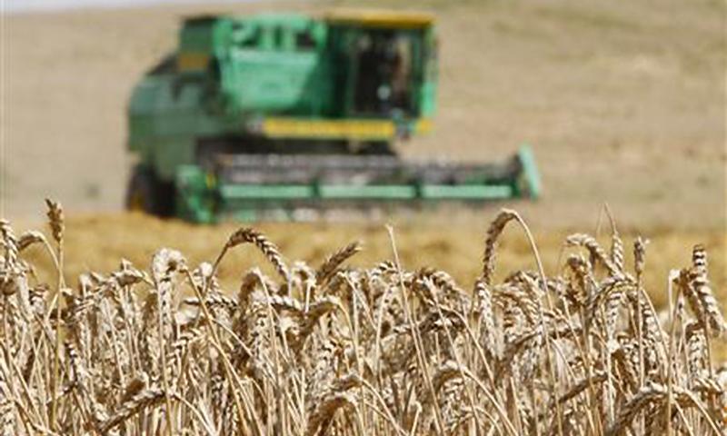 اشیائے خورو نوش کے درآمدی بل میں 50 فیصد تک اضافہ