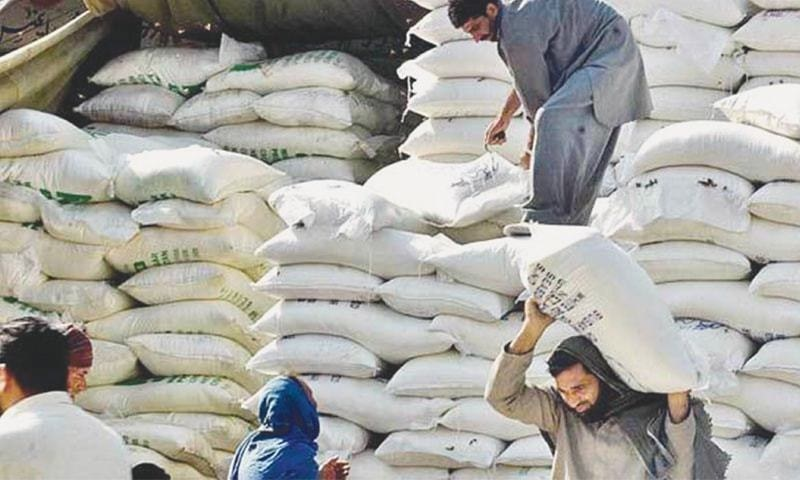 Sindh's new wheat crop has landed in Karachi's wholesale market with the highest-ever price tag of Rs5,000 per 100 kg bag, fuelling fears it may trigger price distortions in the country. — APP/File