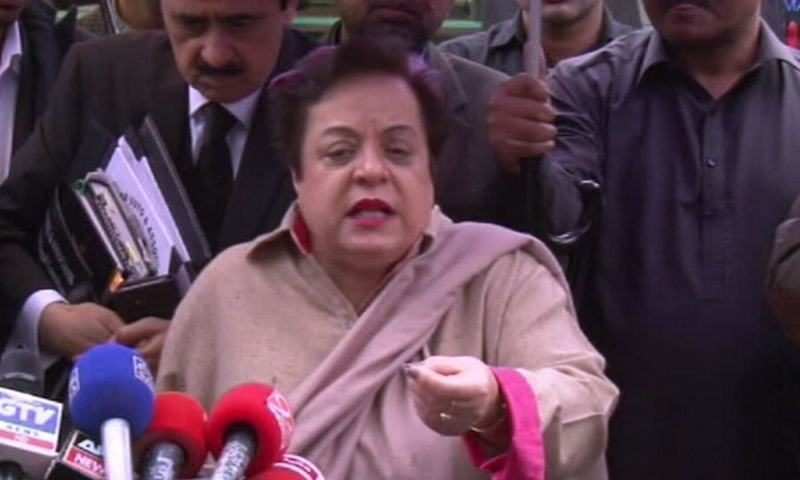 Minister for Human Rights Dr Shireen Mazari will be the chairperson of the inter-ministerial committee. — DawnNewsTV/File