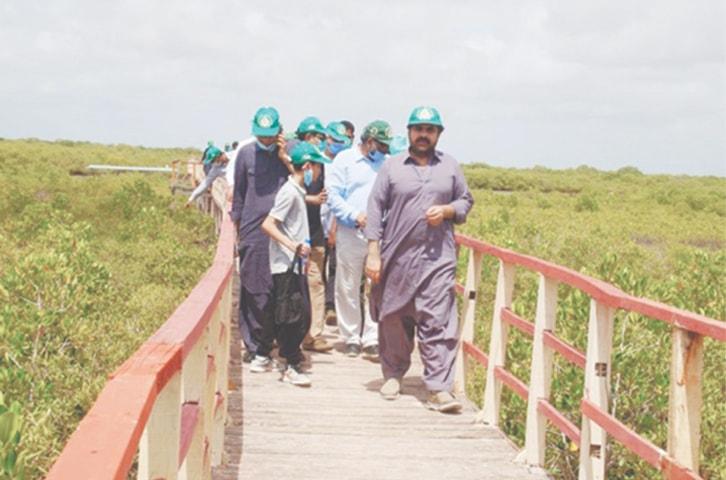 Forest Minister Nasir Hussain Shah visits Keti Bunder | Courtesy Sindh Forest Ministry