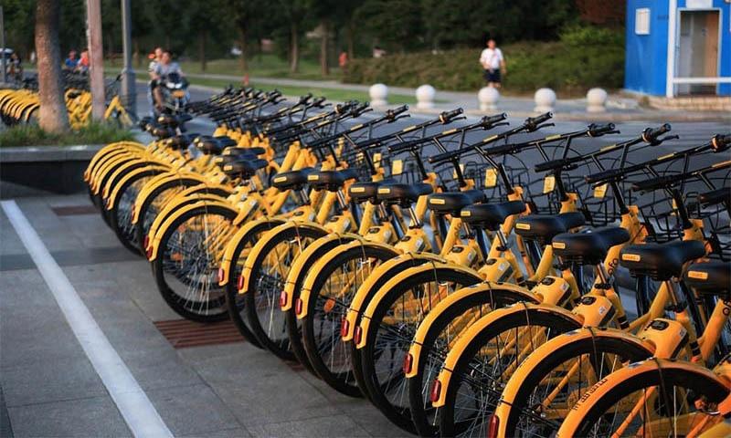 بعض یونیورسٹیاں تو اتنی بڑی ہیں کہ ایک سے دوسری جگہ جانے کے لیے سائیکل استعمال کی جاتی ہے