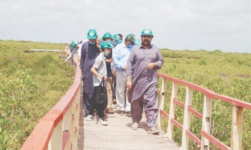 صوبائی وزیر جنگلات ناصر حسین شاہ کیٹی بندر کا دورہ کر رہے ہیں— تصویر بشکریہ سندھ وزارتِ جنگلات