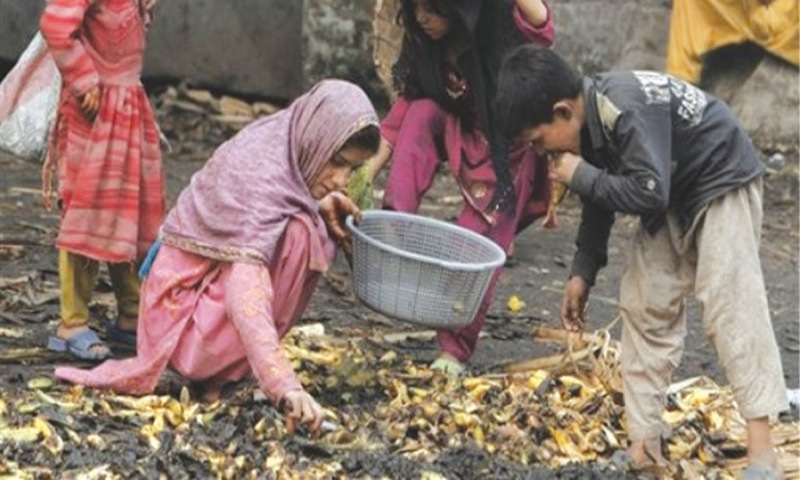 Far from the fort — poor children look for fruits from trash thrown by traders in a fruit and vegetable market in Lahore | Dawn file photo