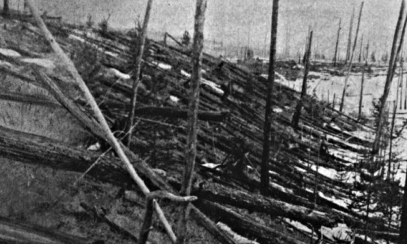 واقعے کے 20 سال بعد کی تصویر میں بھی درخت گرے ہوئے ہیں — فوٹو بشکریہ وکی پیڈیا