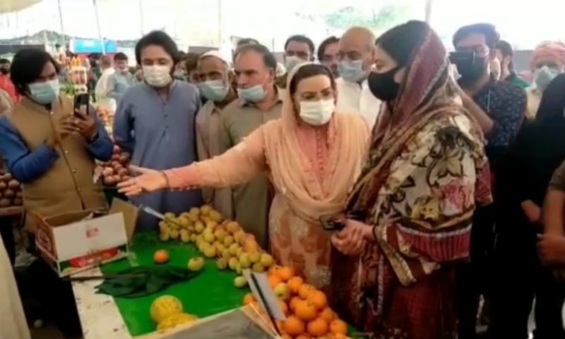 Special Assistant to Chief Minister Dr Firdous Ashiq Awan is seen scolding AC Sonia Sadaf at a stall for 'poor quality of fruit'. — DawnNewsTV Screengrab