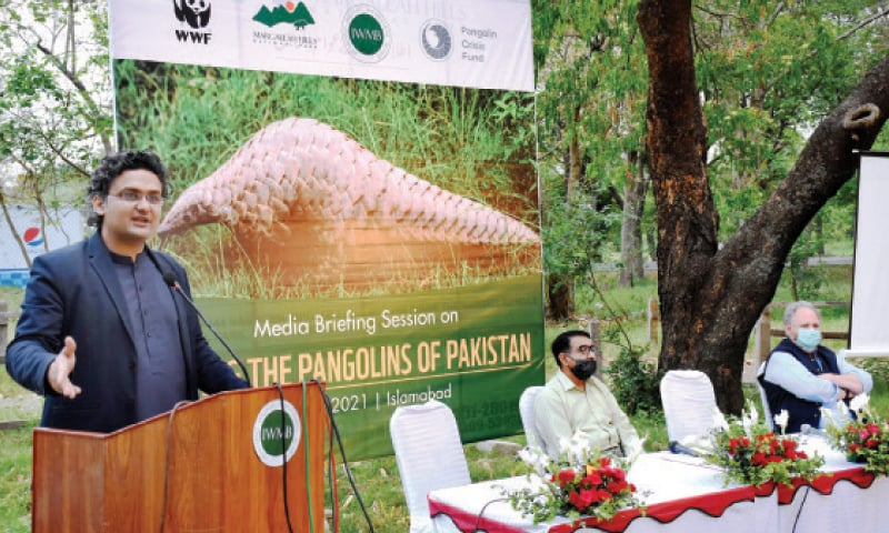 Senate Standing Committee on Information Senator Faisal Javed speaks during the session organised by the WWF at Marghazar Zoo in Islamabad on Wednesday. — Online
