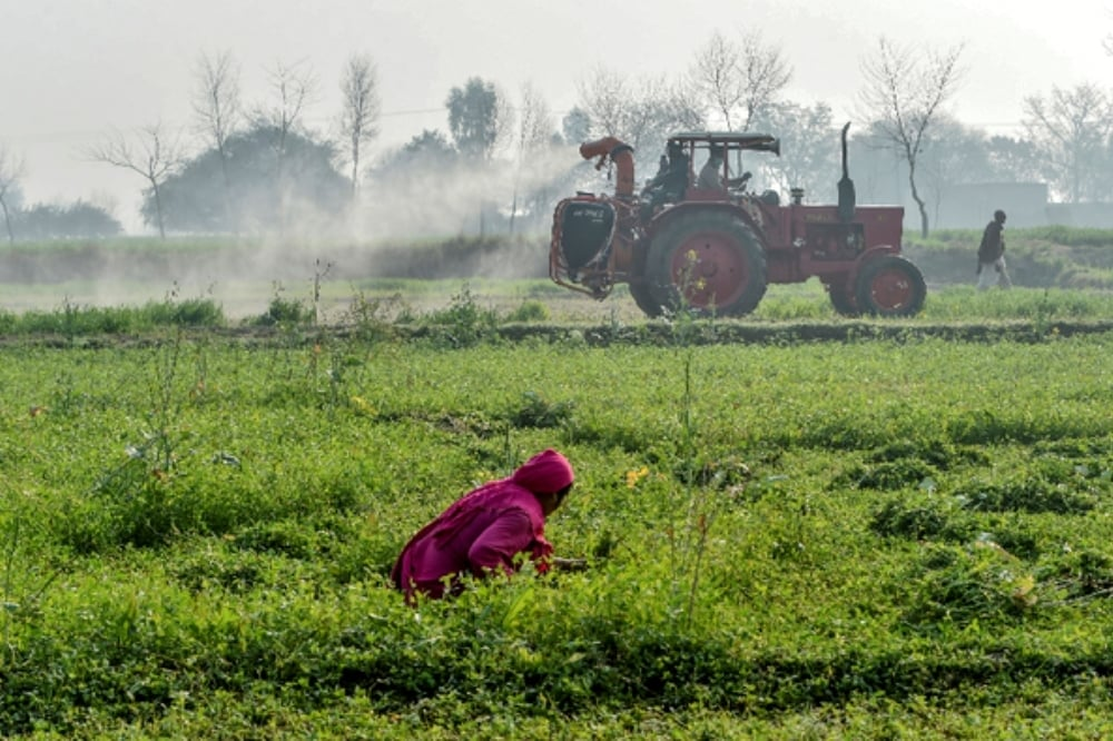 """If farmers return to the """"natural way of doing cultivation"""" on raised beds, that require no tilling and by using organic mulch, it is possible to reverse the damage. — AFP"""