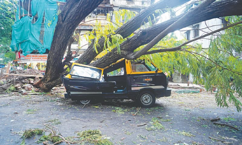 MUMBAI: A damaged vehicle is seen under a fallen tree on a road after gusty winds caused by Cyclone Tauktae on Tuesday.—Reuters