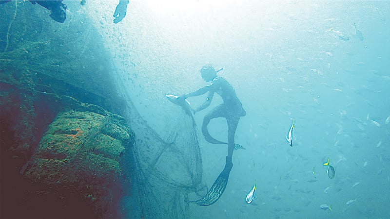 Freeing a trapped fish from the net