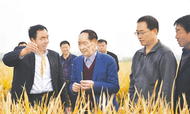 Yuan Longping