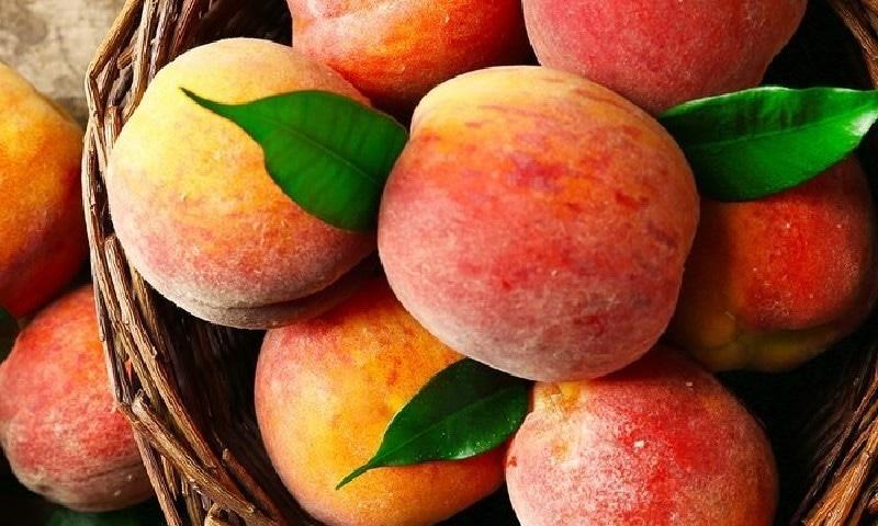 یہ کھٹا میٹھا خوبصورت پھل صحت کے لیے بھی بہت زیادہ مفید
