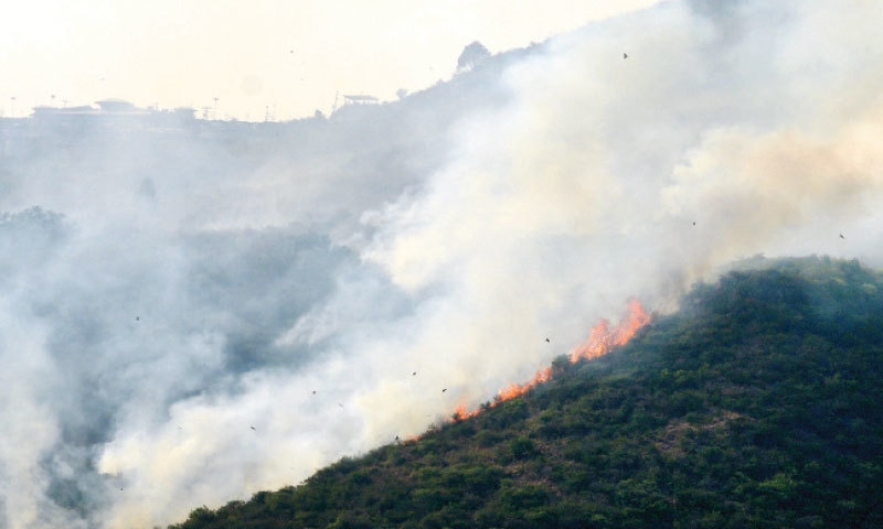 Thick smoke rises as fire spreads to the Saidpur Village side of Margalla Hills in Islamabad on Friday. — White Star