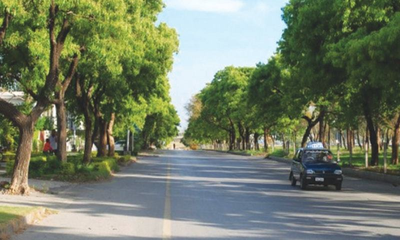 The Parks & Horticulture Authority (PHA) has decided to compile data of all the trees and saplings it owns in its controlled areas to assess the Lahore's actual requirement. — File