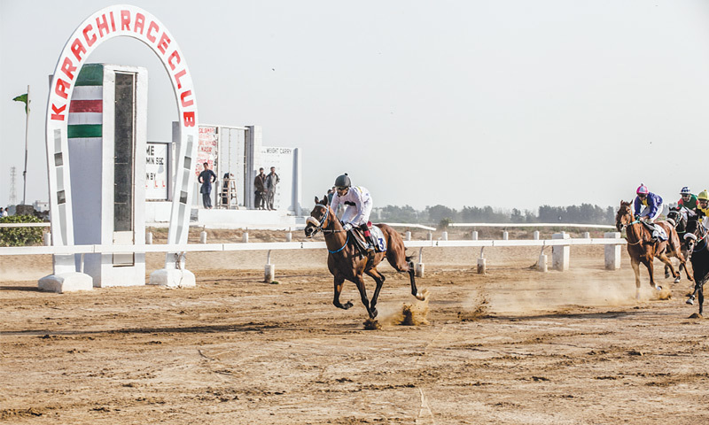 While the masses are being vaccinated to avoid the disease, the KRC is also not left behind and got the horses vaccinated of annual equine flu and other diseases. —Mohammad Ali/White Star