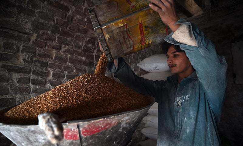 A labourer grinds wheat into flour at a market in Rawalpindi on January 20, 2020. — AFP/File