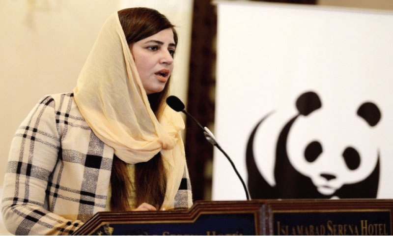 Minister of State for Climate Change Zartaj Gul said the 20 Plants 20 Numbers initiative would encourage the youth to play their part in the national goal of planting trees. — White Star/File