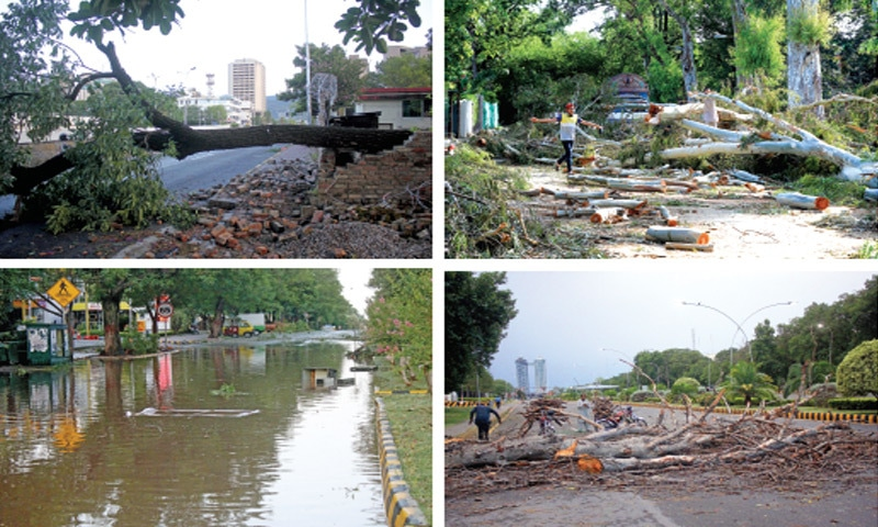 Clockwise from top (L) Thunderstorm and strong winds uprooted several trees in Islamabad early Sunday morning. This combo shows a tree having damaged the boundary wall of a house in G-6, boys playing near logs chopped down by the CDA from damaged trees in F-6, a man collects branches from trees that fell on Constitution Avenue while rainwater stands on School Road in F-6. — Photos by Mohammad Asim