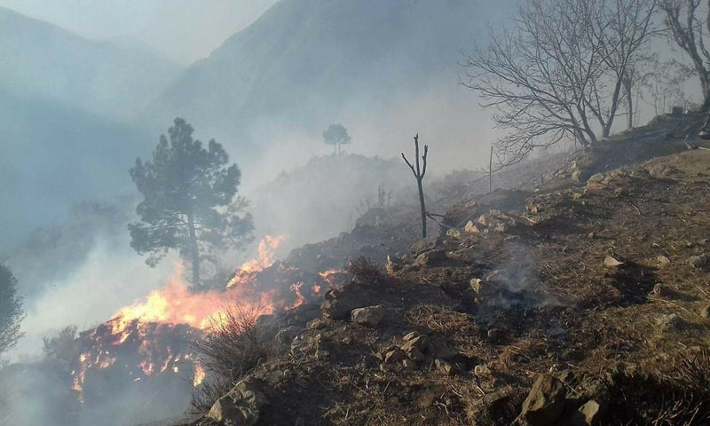 The firefighters of Swabi district, Gadoon Amazai Industrial Estate, Tarbela Dam and Mardan district were already in action to accomplish the task. — Photo courtesy Umar Bacha/File
