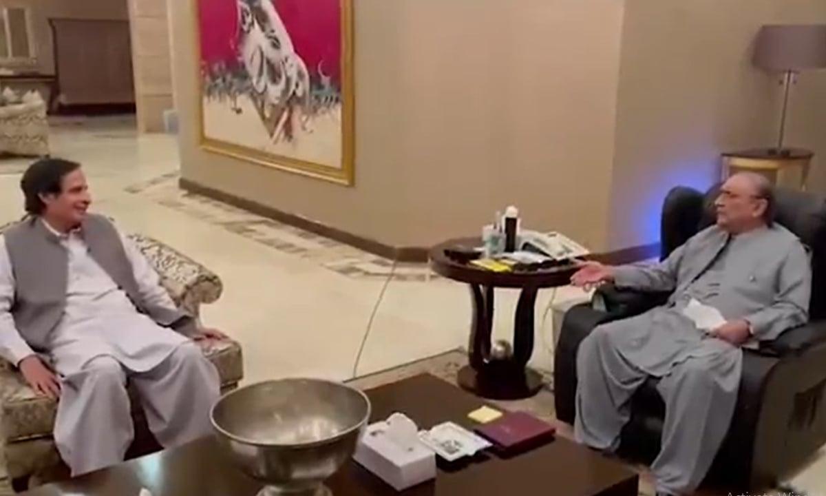 Punjab Assembly Speaker Chaudhry Pervaiz Elahi (left) called on former president Asif Ali Zardari. — DawnNewsTV